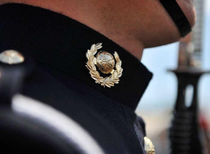 Collar Badge Clearance